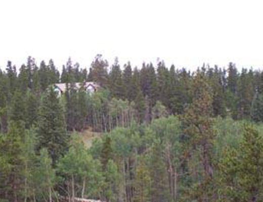 Twin Elk - 3 Bdrm- Breckenridge