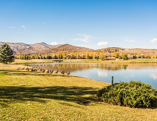Lakeview Cottage #2015 - 2 Bdrm + Loft - Park City (CL)